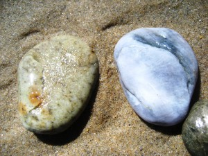Which Stone is Better? by Leslie Nipps